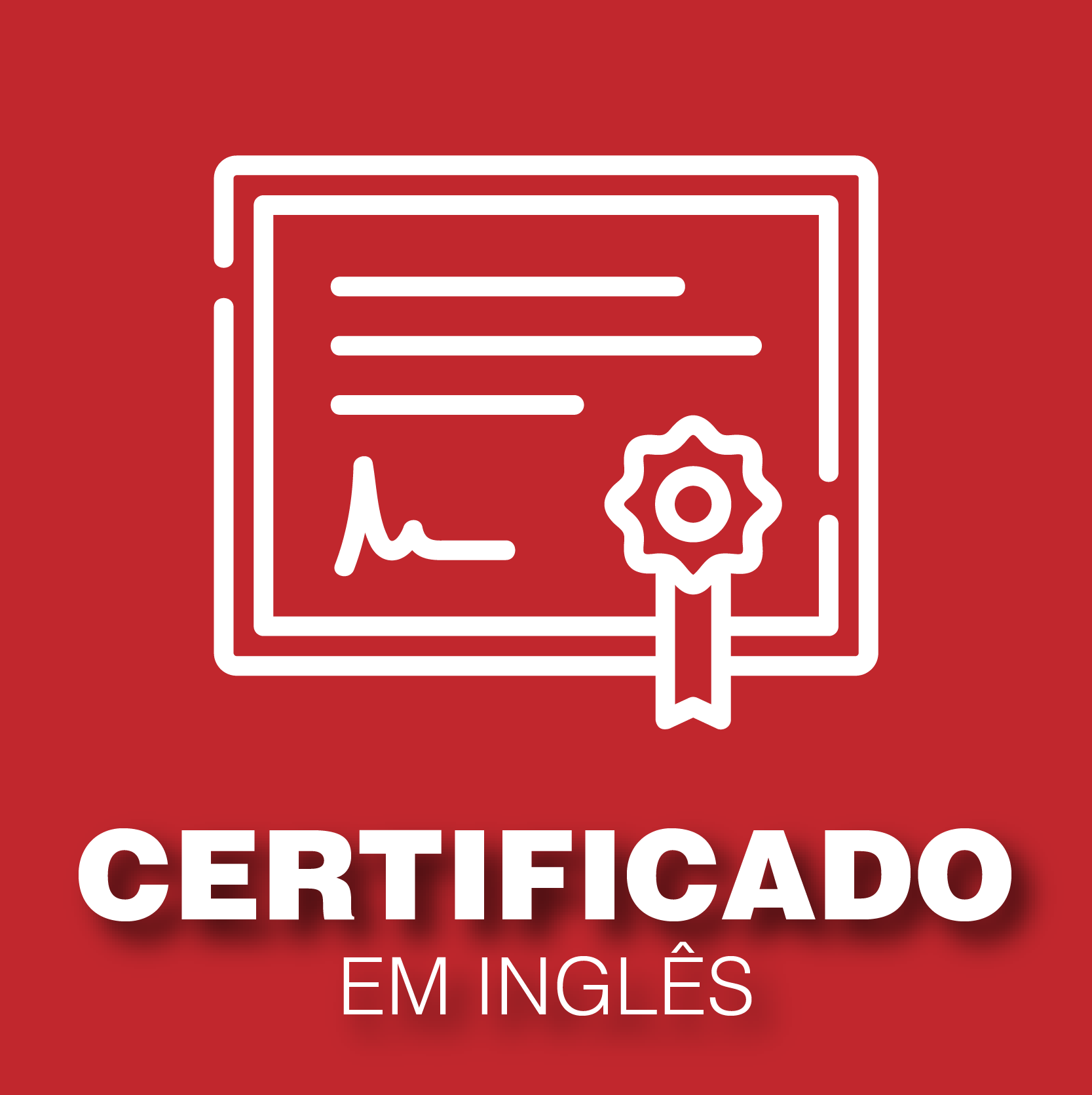 Certificados Belts em Inglês