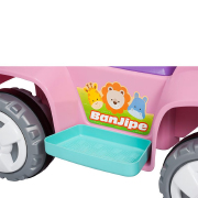 Miniatura - BANJIPE PASSEIO & ANDADOR BANDEIRANTE