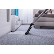Miniatura - EXTRATORA WAP CARPET CLEANER 1600W