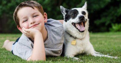 economizar-com-cachorro