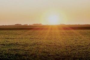 Seguros en Agrofy