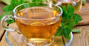 Chá de melissa