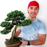 tv-catia-fonseca-faça-você-mesmo-bonsai-Mac-Donald-Fernandes