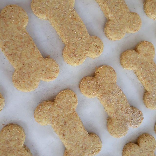 Receita de biscoito para seu pet por Madu