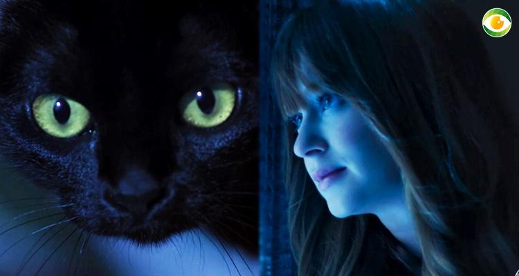 Mistério em O Sétimo Guardião é desvendado: Luz da Lua é filha do gato León