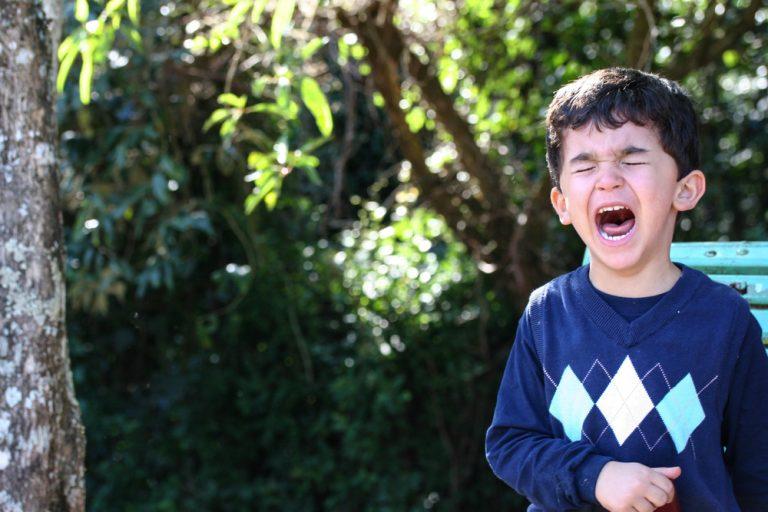 Como lidar com a birra das crianças por Dr. Marcelo Reibscheid