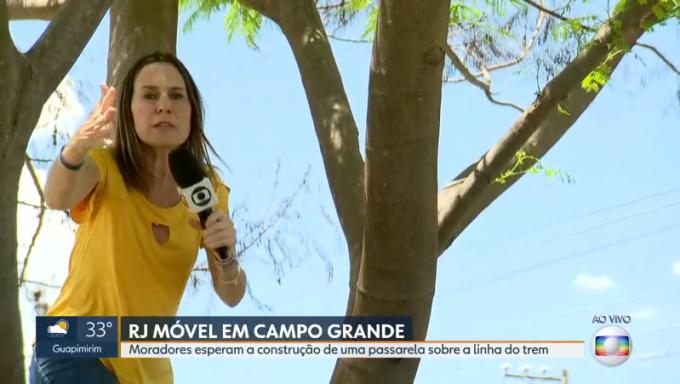 """Repórter da Globo sobe em árvore ao vivo e é advertida: """"Não suba mais"""""""