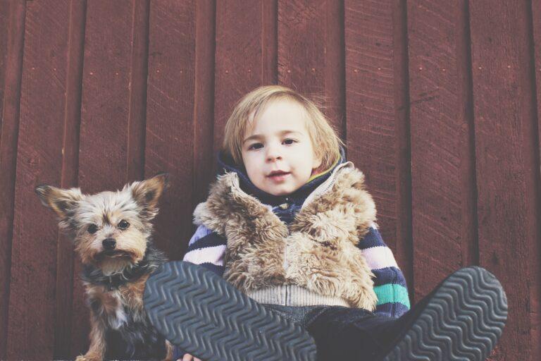 Relação crianças x cachorro por Dr. Renato Zanetti