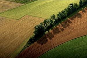 Campos e inmuebles en Agrofy