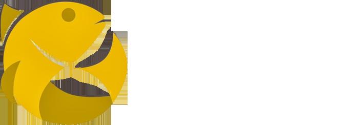 Loja Virtual Ixoye Distribuidora de Alimentos