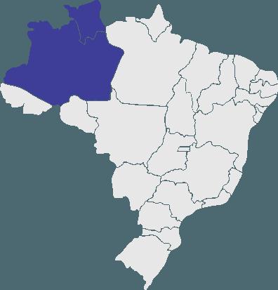 Passagens da  para todo o Brasil