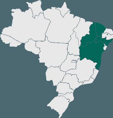 Passagens da Viação Cruzeiro para todo o Brasil