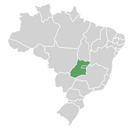 Passagens da Viação Goiânia para todo o Brasil