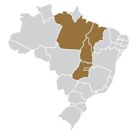 Passagens da Rápido Marajó para todo o Brasil