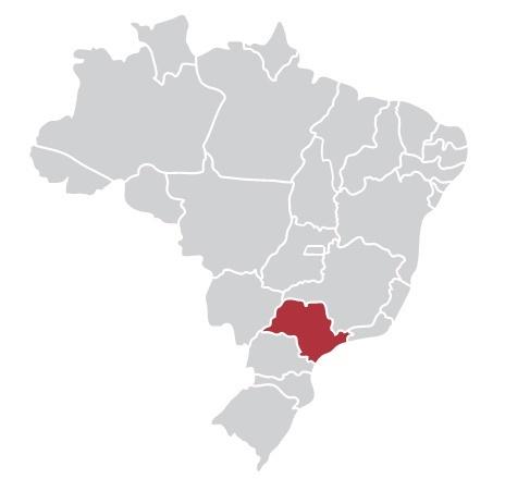 Passagens da Rápido Ribeirão para todo o Brasil