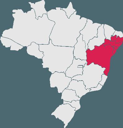 Passagens da Rota Transportes para todo o Brasil