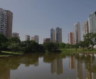 Passagem de onibus da Araguarina de Brasilia para Goiania
