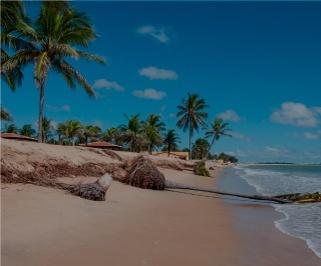 Passagem de onibus da Águia Branca de Aracaju para Salvador