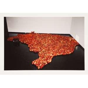 CLAUDIA BAKKER<br>Quanto Tempo Dura<br>impressão/ registro fotográfico de instalação com 1.300 maçãs e esferas de mármore branco, num. 3/10 no verso com atestado de autenticidade do artista<br>25,7 x 38 cm