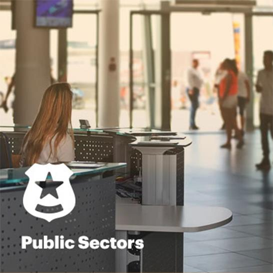 Public Sectors