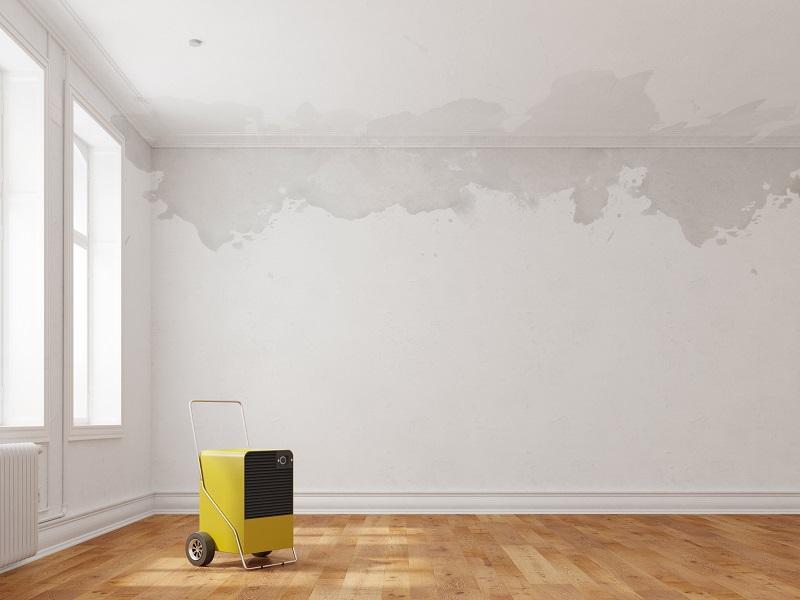 como tirar umidade de parede, como tirar mofo