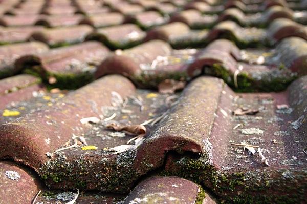 como limpar telhado, como limpar calhas