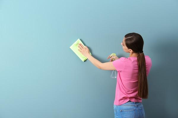 manual de aluguel de apartamento, aluguel de apartamento