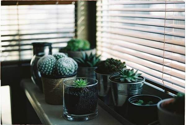 tendências de decoração, tendências de decoração para 2019, dicas de decoração
