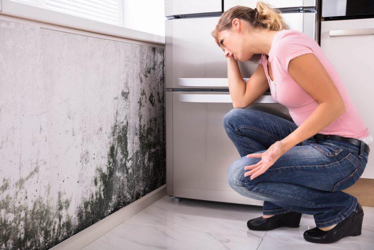 como tirar umidade da parede, umidade na parede