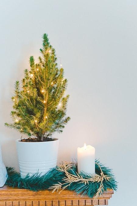 preparativos para o natal, decoração natalina para área interna, como decorar a casa para o natal