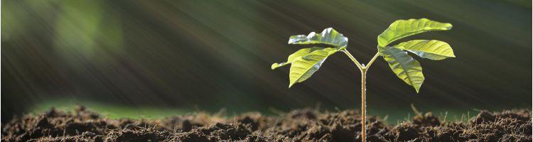 anchieta-imagem-graduacao-gestao-ambiental