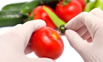 UniAnchieta realiza curso de extensão em segurança de alimentos