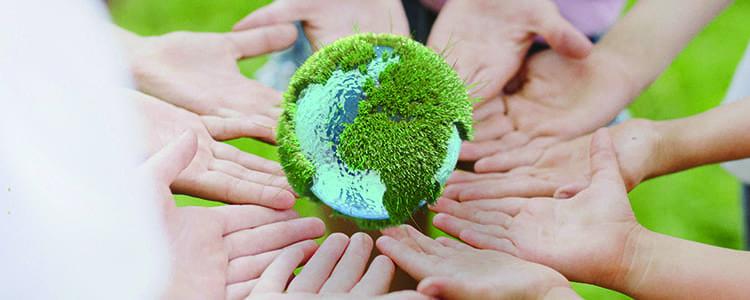 banner-evento-sustentabilidade-e-ecossistemas