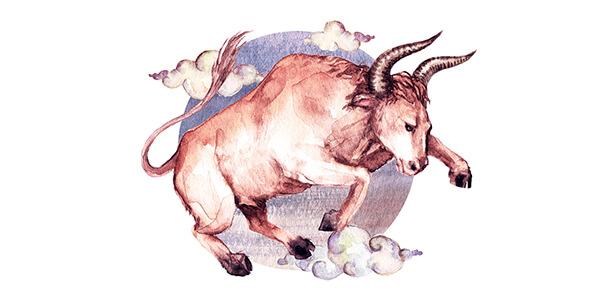 compatibilidade amorosa do signo de touro