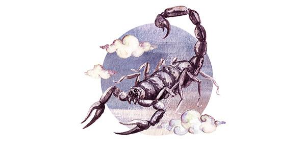 compatibilidade amorosa do signo de escorpião