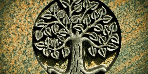 a919038cb41 Conheça o significado da árvore da vida e todos os seus valores