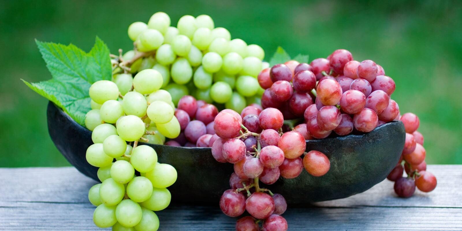 sonhar com uva