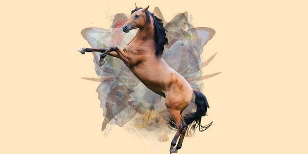 test de personalidad caballo