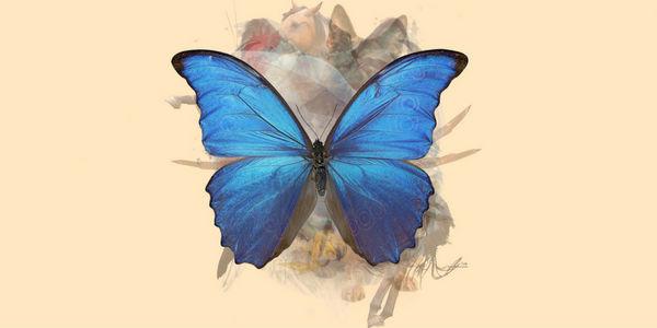 test de personalidad mariposa