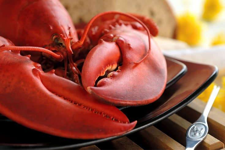 MAPA accepts Health Certificate for Lobster and Lobster Products from Wild Fisheries