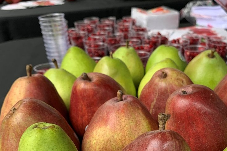 Tasting of American pears and pomegranates for visa applicants