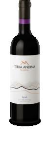 Terra Andina Reserva Syrah 2006 - Terra Andina