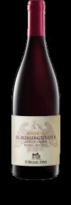 Alto Adige Pinot Noir Riserva 2013  - San Michele Appiano