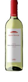 Contrade Malvasia Bianco Salento 2015  - Masseria li Veli