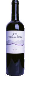 Terra Andina Syrah 2012  - Terra Andina