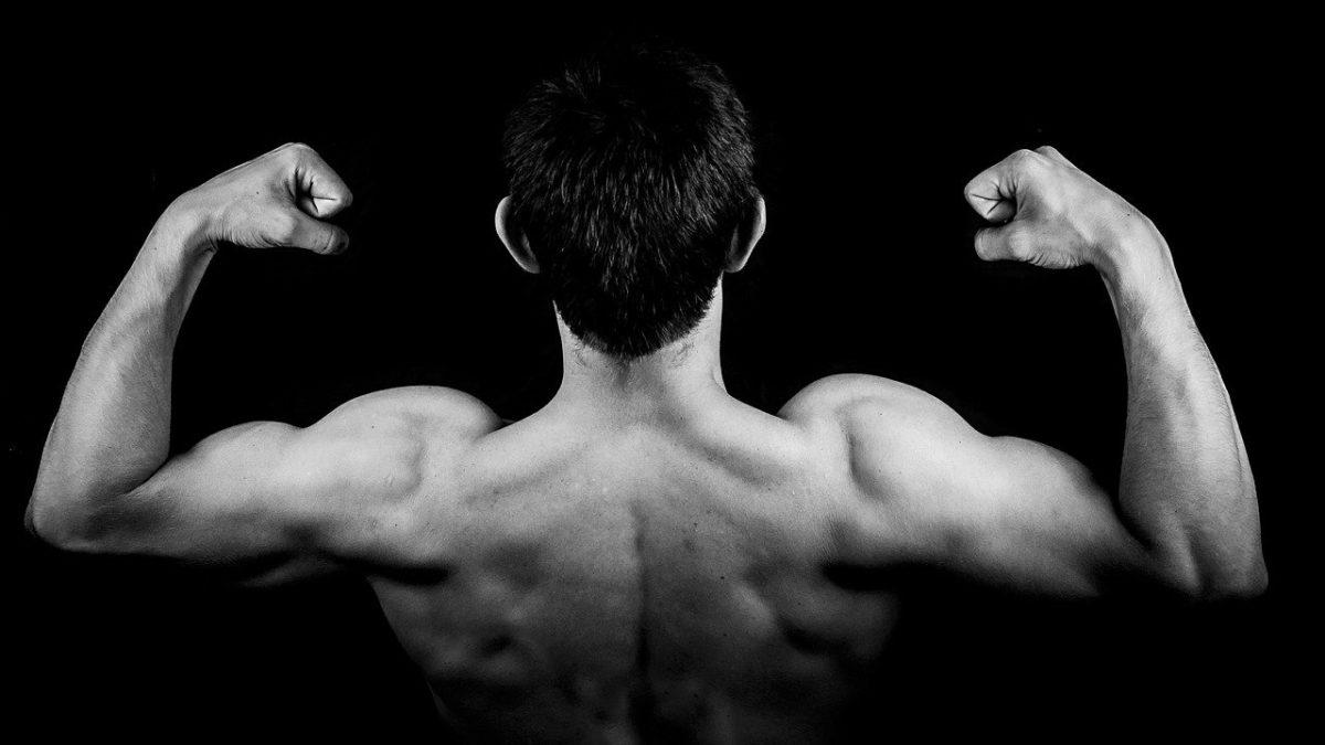 Alimentação para ganhar massa muscular: conheça 10 alimentos para compor sua dieta!