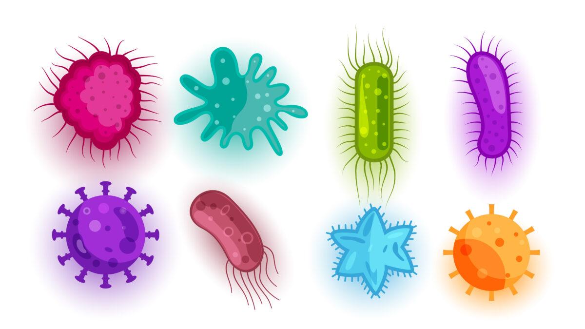 Você sabe como ocorre a transmissão do sarampo?