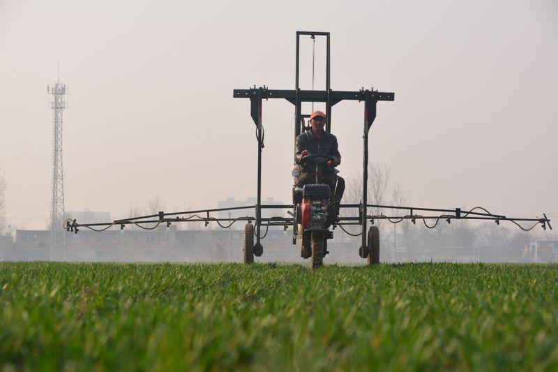 AGROSetor de fertilizantes especiais do Brasil espera crescimento de 24% em 2021