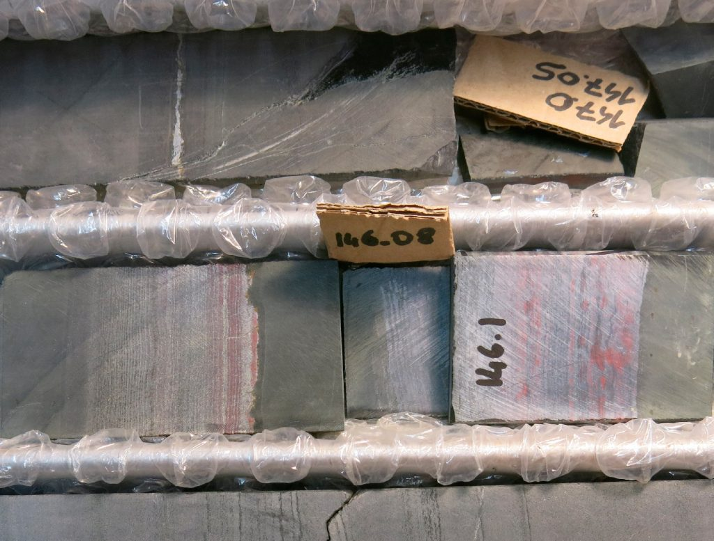 Testigos de perforación de las formaciones rocosas analizadas (E. Pecoits)