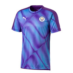 Camiseta Stadium League Del Manchester City Puma
